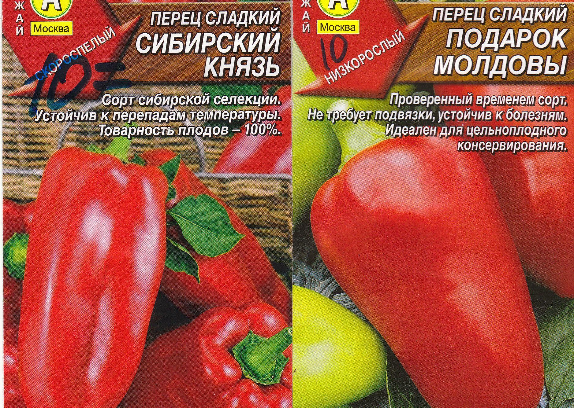 Перец болгарский выращивание на открытом грунте