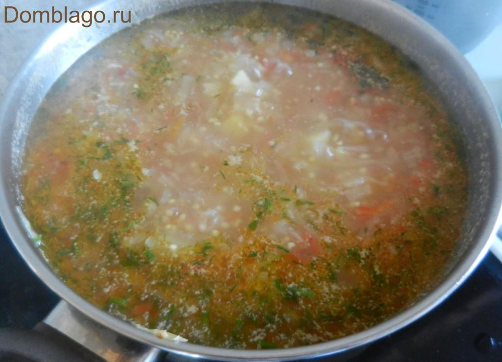 Щи из свежей капусты из свинины рецепт пошагово в