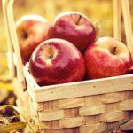 19 августа Яблочный спас. История праздника и традиции
