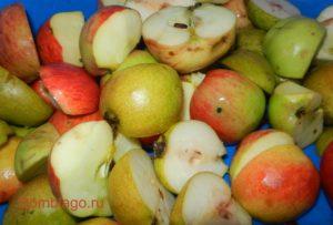 Рецепт домашнего вина из яблок