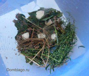 Как засолить огурцы в кастрюле в холодной воде